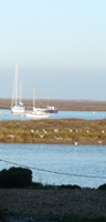 Things to do - Wells-next-the-Sea is on the north Norfolk coast between Holkham and Blakeney  - great for birdwatching, walking, rambling, sailing,nature reserves and dogs